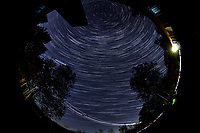 Star Trails looking Up (22:30-23:29). Composite of images  taken with a Nikon D850 camera and 8-15 mm fisheye lens (ISO 800, 10 mm, f/5.6, 30 sec)