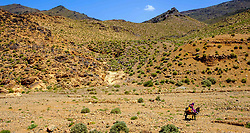 A woman and child ride on a donkey through ther landscape near the Todra Valley in Morocco<br /> <br /> (c) Andrew Wilson   Edinburgh Elite media