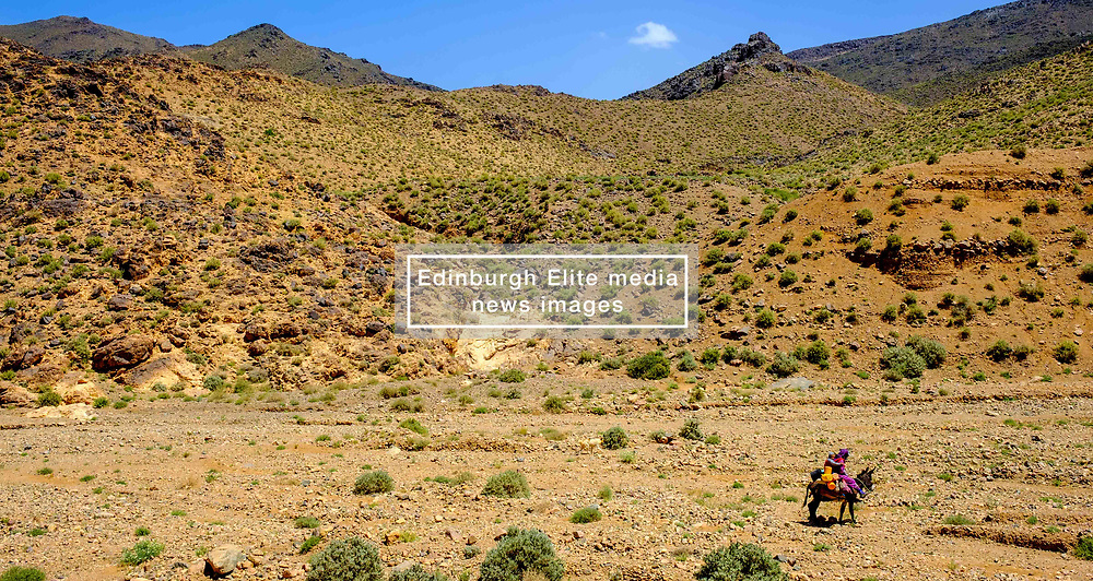 A woman and child ride on a donkey through ther landscape near the Todra Valley in Morocco<br /> <br /> (c) Andrew Wilson | Edinburgh Elite media