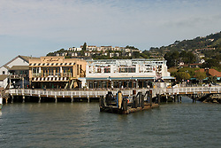 Outdoor dining, city of Tiburon on San Francisco Bay, CA, California.  Appealing community on Marin side with breakfast places, sailboats, outdoor dining, houses with scenic views, views of the Golden Gate, cormorant birdlife, public sculptures, a railroad museum, boutique art shops, and an historic China Cabin building from an ex-ship..Photo camari263-70317..Photo copyright Lee Foster, www.fostertravel.com, 510-549-2202, lee@fostertravel.com.