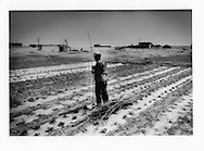 Mongol farmer prepares to erect stakes to support young bean plants.  Plastic sheeting is laid to seal in precious water.  Tongu-lugu-lar village, which until the policies of the Great Leap Forward, can be seen in the background inundated with sand.  A deep well, (seen beside tripod structure on the background left) is all that keeps the village alive.