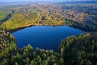 France, Nièvre (58), parc naturel régional du Morvan, vue aerienne sur un lac // France, Burgundy, Nièvre (58), Morvan park, aerial view, lake