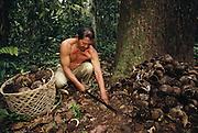 Ese'eja Indian 'Castañera' Brazil Nut Collector<br />Heath River (Bolivian Border)<br />Amazon,  PERU,  South America