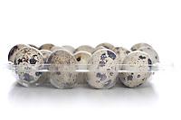 Quail eggs -  studio soht