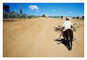A barefoot Basutho youth rides his donkey delivering firewood to his village.