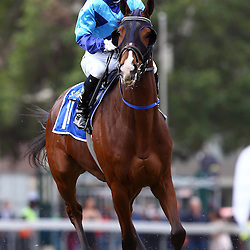 Durban, SOUTH AFRICA, 2, July 2016 - GV from the SABC Gold Vase (Grade 3) – 3000m – R500 000 during   the 2016 Vodacom Durban July ,Greyville Racecourse Durban, South Africa from June 22-26, 2016. (Photo by Steve Haag)