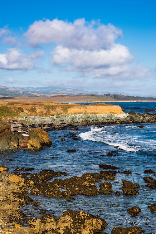 Rocky coastline at Piedras Blancas elephant seal rookery, San Simeon, California USA