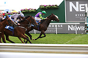 LE MAITRE CHAT (1) ridden by Dougie Costello and trained by Micky Hammond at odds of 66/1 wins The Little Green Rascals Childrens Nurseries Stakes over 2m (£17,000)  during the Newby and the Press Family Raceday at York Racecourse, York, United Kingdom on 9 September 2018. Picture by Mick Atkins.