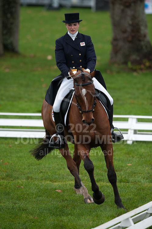 Camilla (Millie) Dumas (GBR) & Artistiek - Dressage - 7 Year Old Horses - Mondial du Lion - FEI World Championship for Young Horses - Le Lion d'Angers, France - 18 October 2012