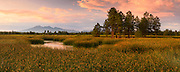 The Kachina Wetlands and San Francisco Peaks in Flagstaff, Arizona.