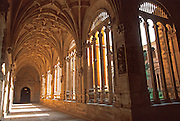 SPAIN, CASTILE and LEON, SALAMANCA Convento de San Esteban (St. Stephen) built in the 16th-17th century with a magnificent cloister