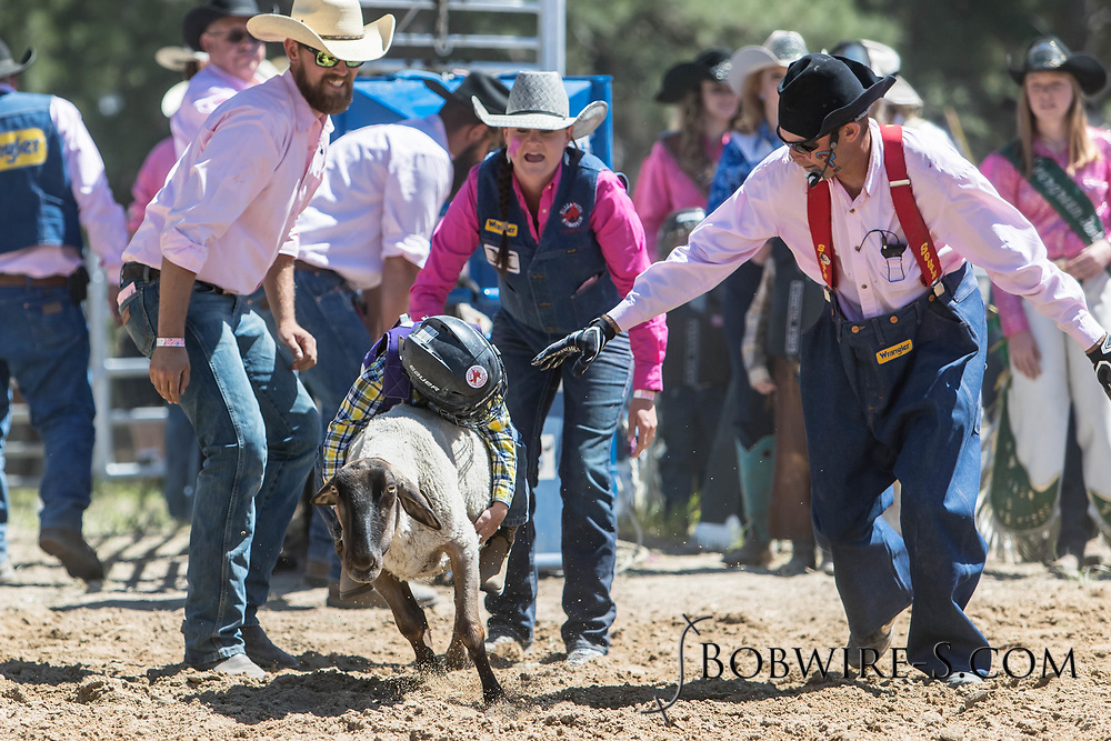 Young competitors take part in Mutton Bustin' in the first performance of the Elizabeth Stampede on Saturday, June 2, 2018.