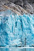 Terminus of the Dawes Glacier in Endicott Arm, Alaska.