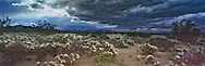 A spring rainstorm arrives over the Mojave desert in southern California in April, 1994.