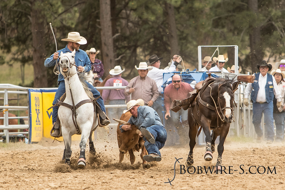 Aaron Vosler makes his steer wrestling run during the third performance of the Elizabeth Stampede on Sunday, June 3, 2018.
