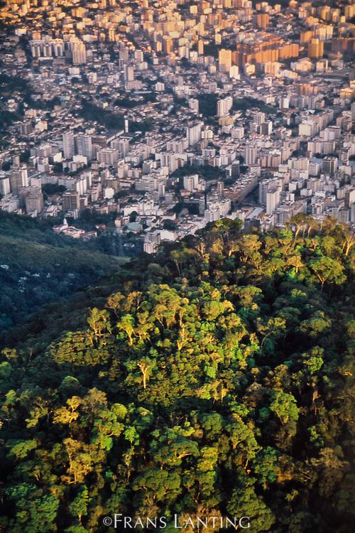 Atlantic rainforest next to city sprawl (aerial), Rio de Janeiro, Brazil