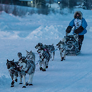2013 Yukon Quest - Finish Line