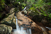 Gravestone Brook, Adirondacks, NY.  Getting too steep, I wasn't going to make it any further than this.  I've been drawn up here by the sound of the water and glimpses of the pours off the rocks, and finally see a good size fall above.  I am stopped though, by a deep pool, and banks too angled and slippery to get around.   I tried, because I hate giving up, hoping for another take, and then I saw it as a bigger work, the complete personality. Part of it is cracked and flawed, and part too pretty to look at for long, for fear you'll wear it out.  Sometimes we don't see what's right in front of us, the attraction of one thing blinding us to the beauty of another.   I wish you perspective.