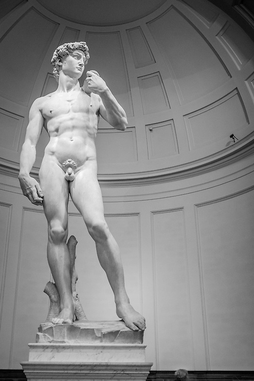 David by Michelangelo at the  Accademia di Belle Arti di Firenze.