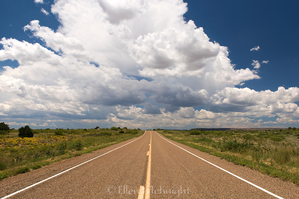 Route 102 in New Mexico
