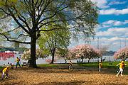 New York City: Spring baseball at Riverside Drive park