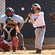 A young baseball player watches the ball while batting during the Norwalk Little League baseball competition at Broad River Fields,  Norwalk, Connecticut. USA. Photo Tim Clayton