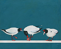 What seems to be the trouble with these three Black Seagulls? This fine art piece by celebrated artist Jan Keteleer provides us with an interesting snapshot of three such birds, in the midst of what appears to be a rather serious argument. This piece brings to mind everything you probably love about going to the ocean for the weekend. -<br /> <br /> BUY THIS PRINT AT<br /> <br /> FINE ART AMERICA<br /> ENGLISH<br /> https://janke.pixels.com/featured/three-black-seagulls-fighting-with-one-another-jan-keteleer.html<br /> <br /> WADM / OH MY PRINTS<br /> DUTCH / FRENCH / GERMAN<br /> https://www.werkaandemuur.nl/nl/shopwerk/Drie-zwarte-meeuwen-die-met-elkaar-vechten-/517254/132