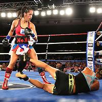 Boxing Telemundo Tampa