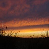 Sunset over grassy sand dunes at Walberswick, Suffolk, England.