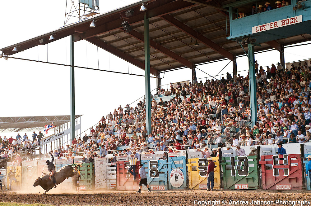 Pendleton Roundup, Eastern Oregon, celebrating 99th year of bull riding and cultural celebrations