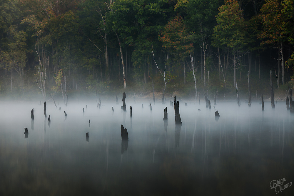 There's a quiet mystery hidden beneath the shallow fog. The lake's breath barely trembles as a story is exhaled from the mist. Whether a lie or the truth, is dependent on one's ability to listen.