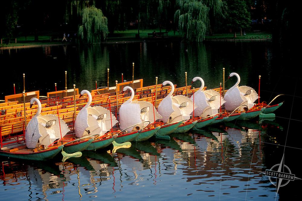 Swan Boats Public Garden Pond Boston, MA