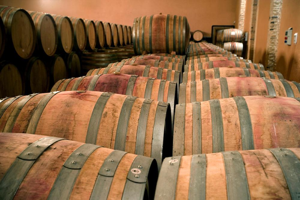 Emilio Moro Winery in Ribera del Duero (Spain).<br /> <br /> Bodegas de Emilio Moro (Ribera del Duero).