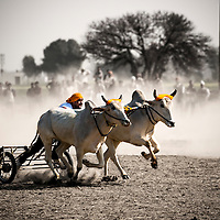 Kila Raipur, The Rural Olympics of Punjab.
