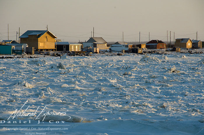 Houses along the edge of the Churchill river, Churchill, Manitoba.