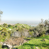 Shephelah-Aijalon Valley