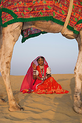 Photographed through her camel's legs, a tribal girl in the Thar Desert  sits on a sand dune dressed in a decorative red sari,Thar Desert,Rajasthan, India
