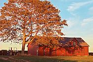 Duck Walk Vineyards, Cutchogue, red barn, New York