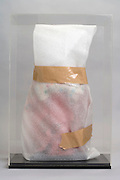 doll wrapped up in protective foam with plexiglas box cover
