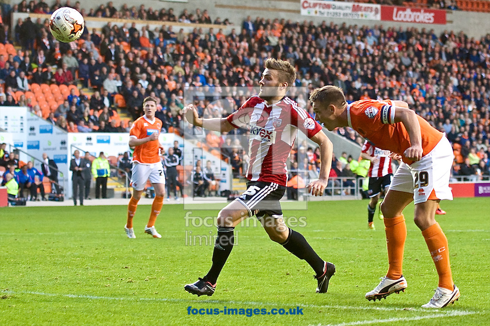 Anthony McMahon of Blackpool heads back to the goalkeeper under pressure from Stuart Dallas of Brentford during the Sky Bet Championship match at Bloomfield Road, Blackpool<br /> Picture by Ian Wadkins/Focus Images Ltd +44 7877 568959<br /> 19/08/2014