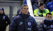 Brighton Manager, Chris Hughton during the Sky Bet Championship match between Brighton and Hove Albion and Sheffield Wednesday at the American Express Community Stadium, Brighton and Hove, England on 8 March 2016.