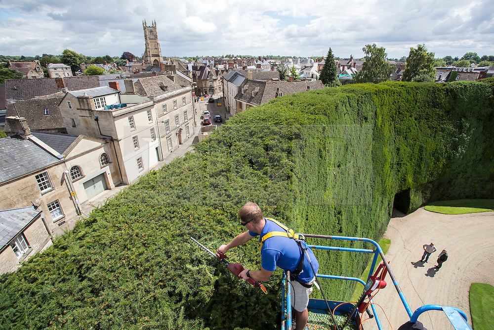 © Licensed to London News Pictures 04/08/2016, City, UK. John Rutterford, forester on the Bathurst Estate, Cirencester uses a cherry picker to give the estates 40ft high, 300 year old Yew hedge it's annual trim. The hedge is the largest of it's kind in the world and it can take up to weeks to complete the job. Photo Credit : Stephen Shepherd/LNP