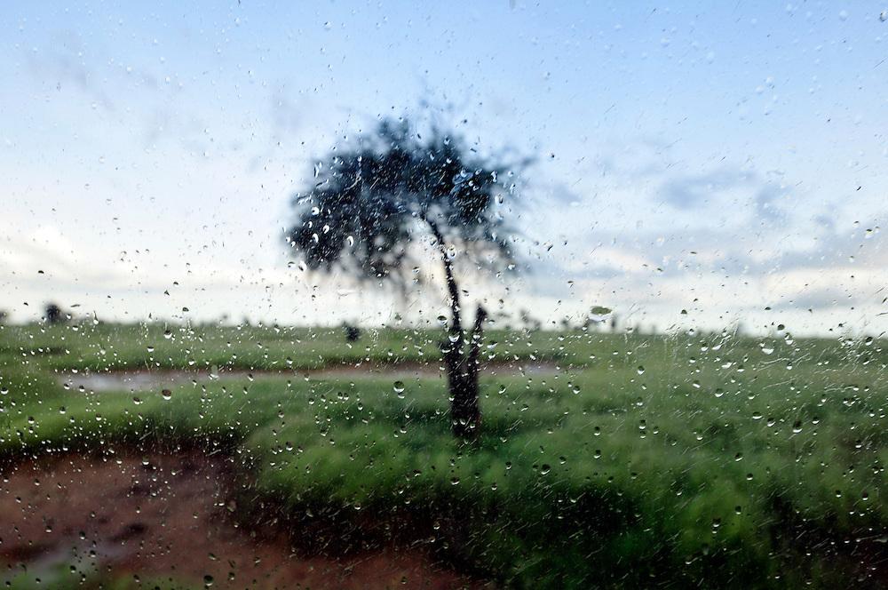 La pluie tombe pendant la saison d'hivernage au Sahel..Namandény, Sénégal. 05/09/2010..Photo © J.B. Russell