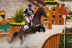 Touzaint Nicolas, FRA, Absolut Gold<br /> CHIO Aachen 2019<br /> Weltfest des Pferdesports<br /> © Hippo Foto - Dirk Caremans<br /> Touzaint Nicolas, FRA, Absolut Gold
