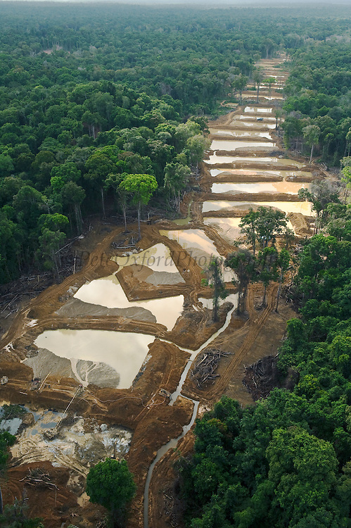 Alluvial Gold Mining<br /> Rainforest<br /> GUYANA<br /> South America