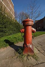 Schiedam, Bosatlas van het Cultureel Erfgoed