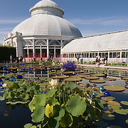 Haupt Conservatory at The New York Botanical Garden