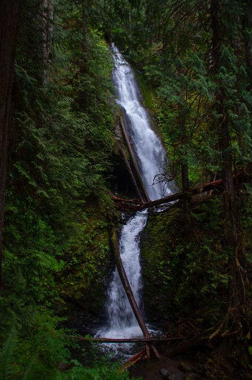 Murhut Falls, Olympic National Forest, Hood Canal Ranger District, Quilcene, WA