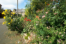 Natuurlijke tuinen