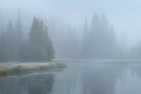 Morning fog at Schwabacher Landing, Grand Teton National Park Wyoming
